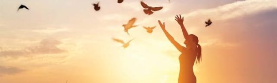 The Powerful Healing Lessons Of Forgiveness